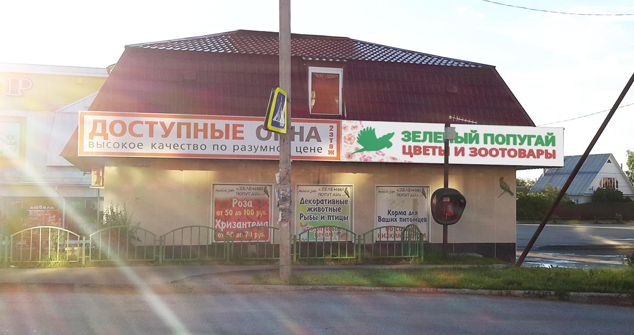 Магазин Зеленый попуга